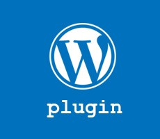 wordpress customizer export import plugin